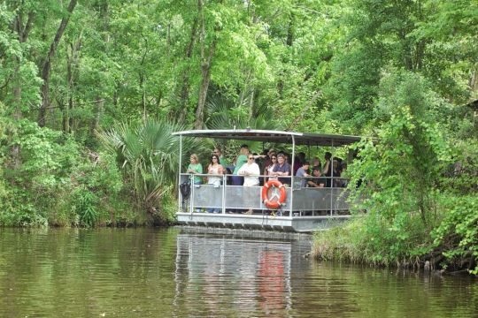 Swamp Tour New Orleans >> What To Bring To The Swamp Jean Lafitte Swamp Tours